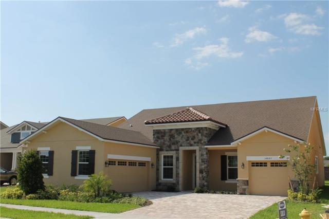 14885 Ellingsworth Lane, Winter Garden, FL 34787 (MLS #O5786960) :: Zarghami Group