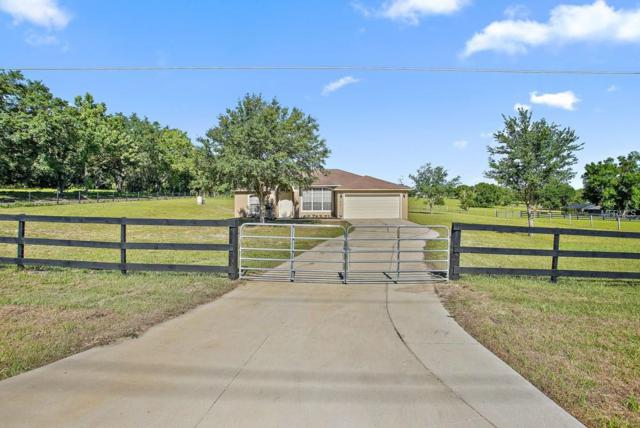 21215 S Buckhill Road, Clermont, FL 34715 (MLS #O5787046) :: Mark and Joni Coulter | Better Homes and Gardens