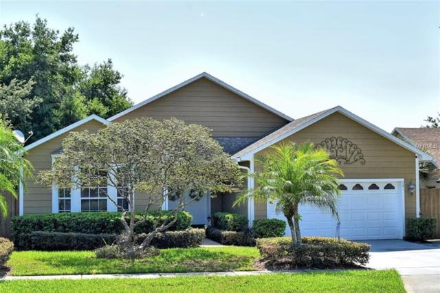 981 Dekleva Drive, Apopka, FL 32712 (MLS #O5787060) :: Mark and Joni Coulter | Better Homes and Gardens