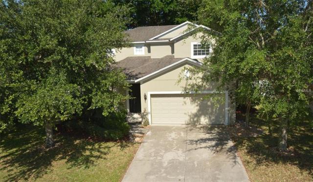 369 Misty Oaks Lane, Eustis, FL 32736 (MLS #O5787094) :: The Duncan Duo Team
