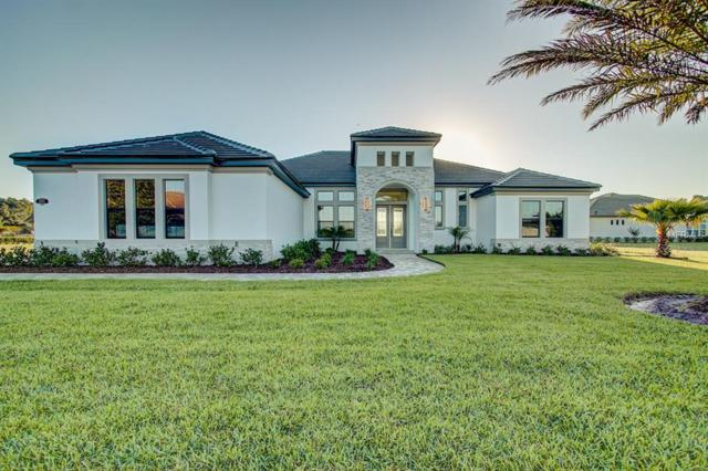 25621 Grandview Point, Sorrento, FL 32776 (MLS #O5787149) :: Cartwright Realty