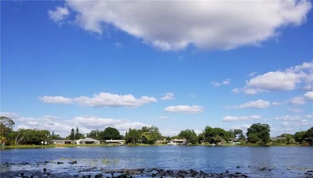 12 Interlaken Road, Orlando, FL 32804 (MLS #O5787172) :: Advanta Realty