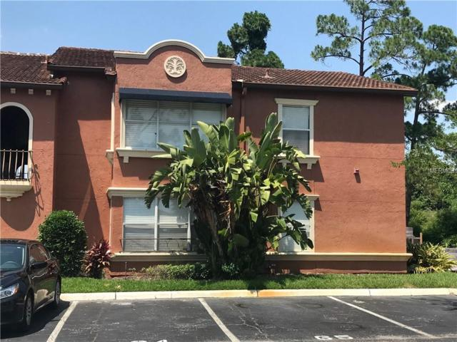 5116 Conroy Road #13, Orlando, FL 32811 (MLS #O5787292) :: Team 54