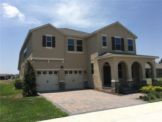 16142 Azure Key Street, Winter Garden, FL 34787 (MLS #O5787544) :: Bustamante Real Estate
