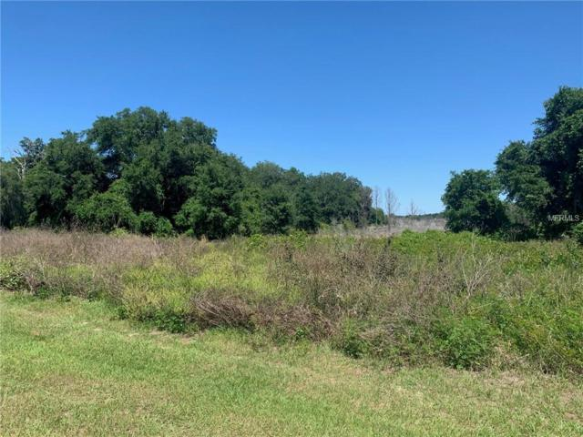 Lot 31 Long And Winding Road, Groveland, FL 34737 (MLS #O5787570) :: Rabell Realty Group