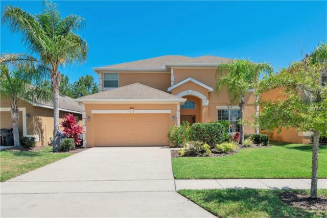 4456 Nirvana Parkway, Kissimmee, FL 34746 (MLS #O5787596) :: The Brenda Wade Team