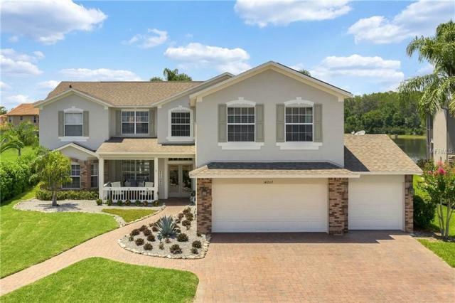 14207 Ludgate Hill Lane, Orlando, FL 32828 (MLS #O5787673) :: RE/MAX Realtec Group