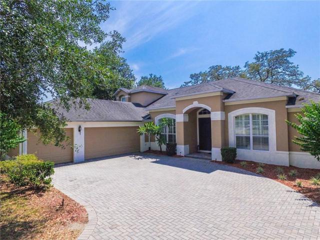 2408 Parkside Meadow Drive, Apopka, FL 32712 (MLS #O5787786) :: Rabell Realty Group