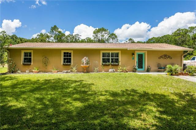 280 N Jungle Road, Geneva, FL 32732 (MLS #O5787801) :: Cartwright Realty
