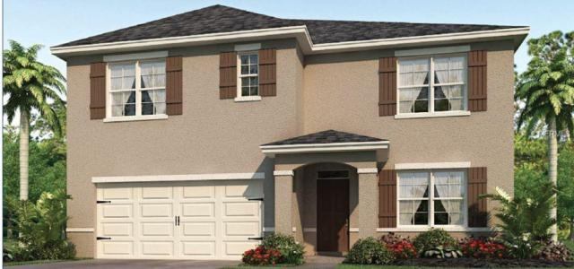 1896 Cassidy Knoll Drive, Kissimmee, FL 34744 (MLS #O5788065) :: The Duncan Duo Team