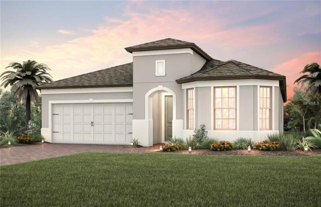 1188 Patterson Terrace, Lake Mary, FL 32746 (MLS #O5788233) :: Delgado Home Team at Keller Williams