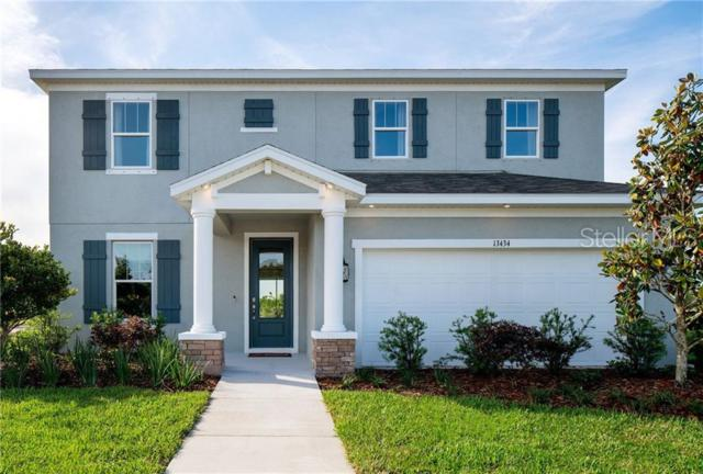 13351 Sea Bridge Drive, Hudson, FL 34669 (MLS #O5788340) :: Cartwright Realty