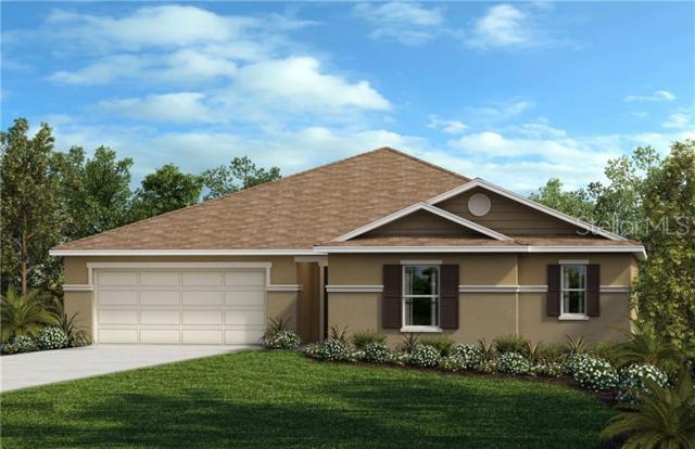 15841 Bradicks Court, Clermont, FL 34711 (MLS #O5788393) :: The Light Team