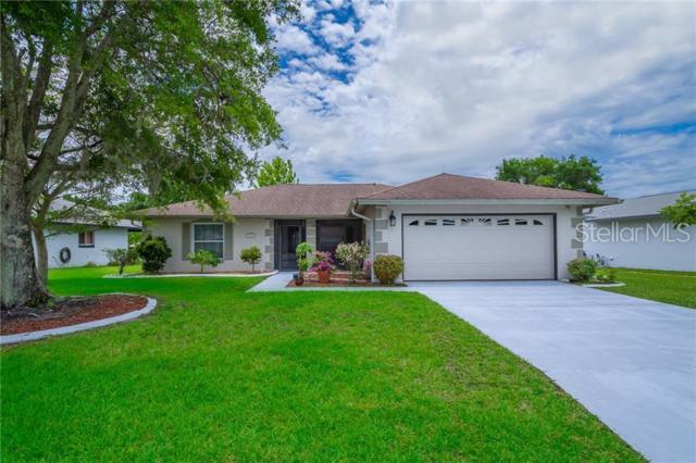 11238 Scenic View Lane, Orlando, FL 32821 (MLS #O5789509) :: Baird Realty Group