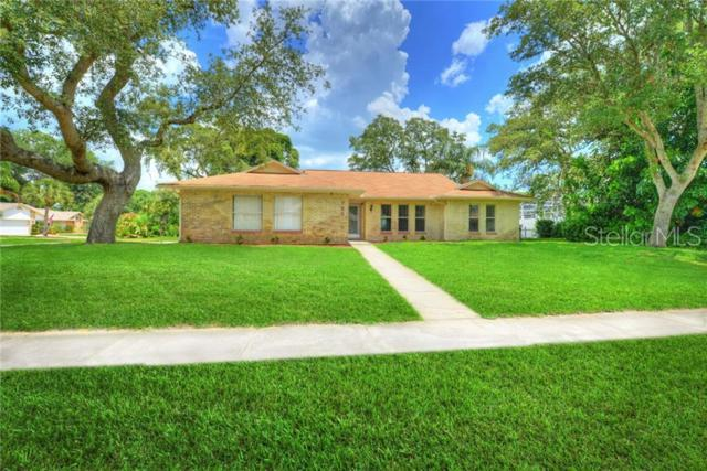 733 Prospect Point Drive, Port Orange, FL 32127 (MLS #O5789673) :: The Duncan Duo Team
