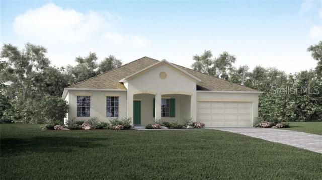 10120 Florence Ridge Drive, Clermont, FL 34711 (MLS #O5790106) :: Burwell Real Estate