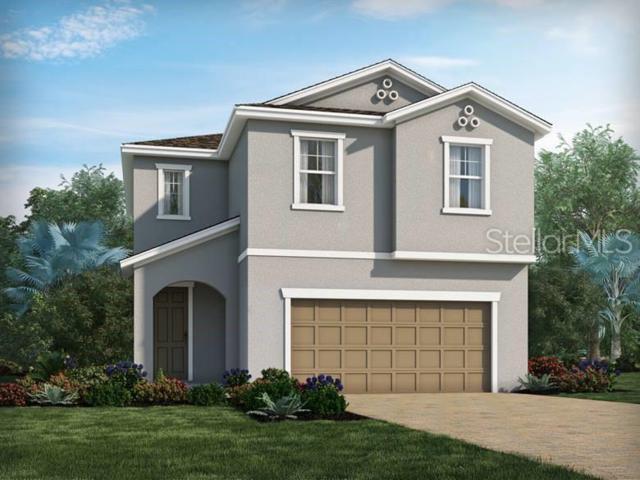 7459 Ashcroft Drive, Wesley Chapel, FL 33545 (MLS #O5790135) :: The Duncan Duo Team