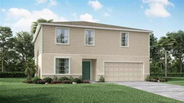 1131 Nelson Meadow Lane, Poinciana, FL 34759 (MLS #O5790259) :: The Duncan Duo Team