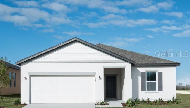 3006 Trubs Trace, New Smyrna Beach, FL 32168 (MLS #O5790285) :: The Duncan Duo Team
