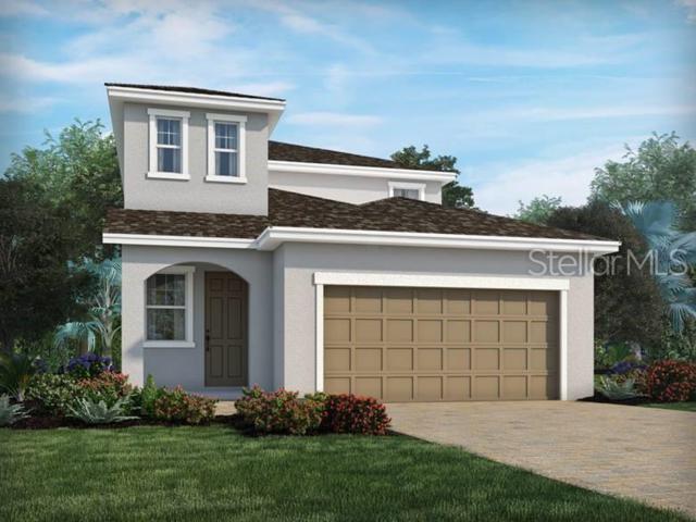 7443 Ashcroft Drive, Wesley Chapel, FL 33545 (MLS #O5790868) :: The Duncan Duo Team