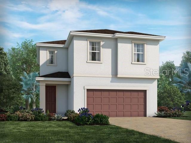 7444 Ashcroft Drive, Wesley Chapel, FL 33545 (MLS #O5790875) :: The Duncan Duo Team