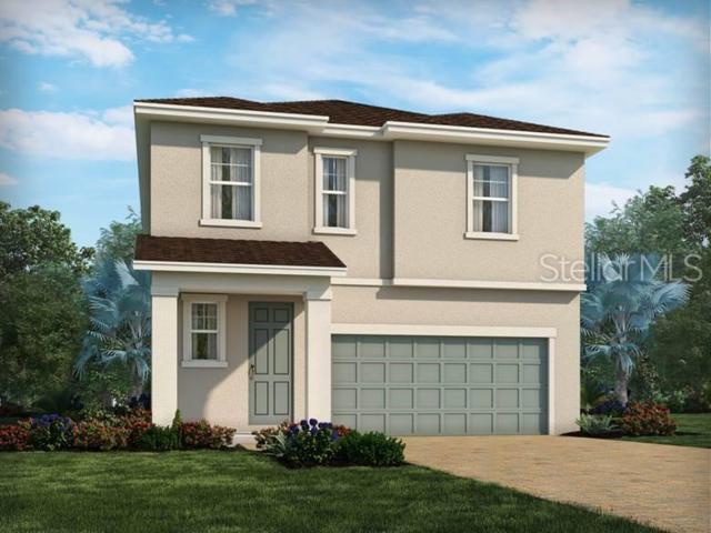 7451 Ashcroft Drive, Wesley Chapel, FL 33545 (MLS #O5790904) :: The Duncan Duo Team
