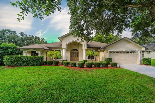 4905 Emilee Grace Lane, Saint Cloud, FL 34771 (MLS #O5790982) :: Cartwright Realty