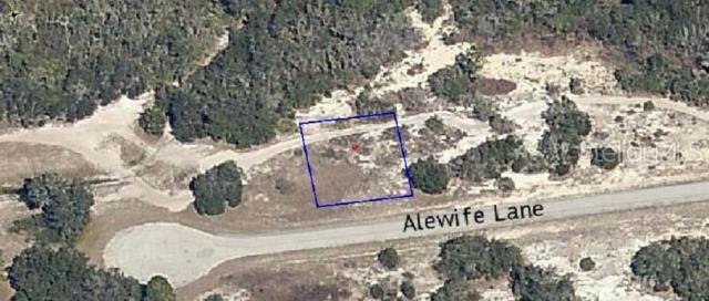 Alewife Lane, Poinciana, FL 34759 (MLS #O5791005) :: Cartwright Realty