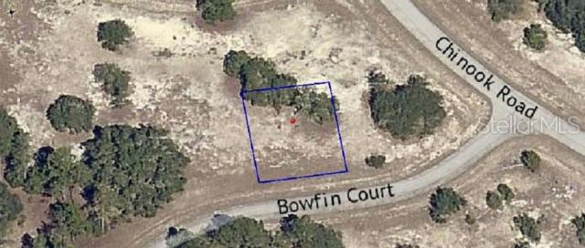 Bowfin Court, Poinciana, FL 34759 (MLS #O5791016) :: Cartwright Realty