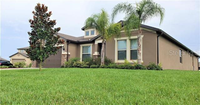 3297 Kayak Way, Orlando, FL 32820 (MLS #O5791239) :: Rabell Realty Group