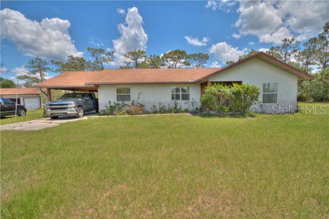 3269 La Salle Avenue, Saint Cloud, FL 34772 (MLS #O5791275) :: Godwin Realty Group