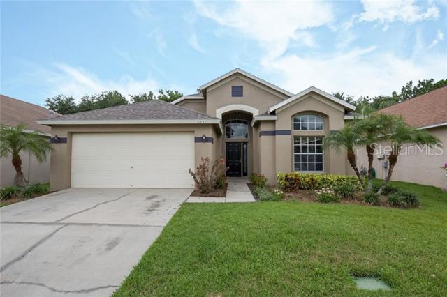 1231 Horsemint Lane, Wesley Chapel, FL 33543 (MLS #O5791291) :: Team Bohannon Keller Williams, Tampa Properties