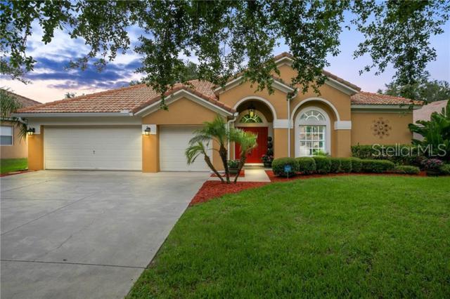 11256 Ledgement Lane, Windermere, FL 34786 (MLS #O5791321) :: Bridge Realty Group
