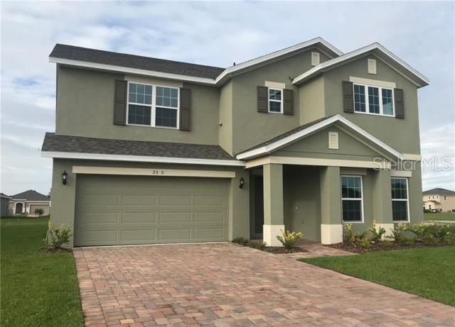 2590 Wadeview Loop, Saint Cloud, FL 34769 (MLS #O5791359) :: The Duncan Duo Team