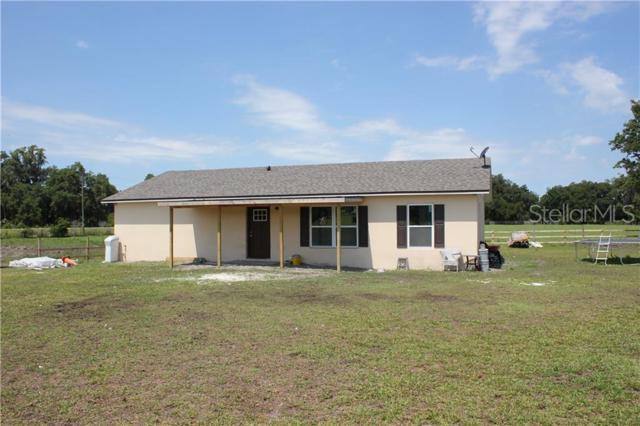 13724 Cr 737, Webster, FL 33597 (MLS #O5791381) :: Gate Arty & the Group - Keller Williams Realty