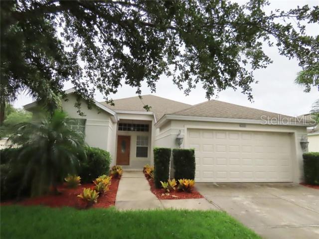 6233 Beldon Drive, Mount Dora, FL 32757 (MLS #O5791434) :: McConnell and Associates
