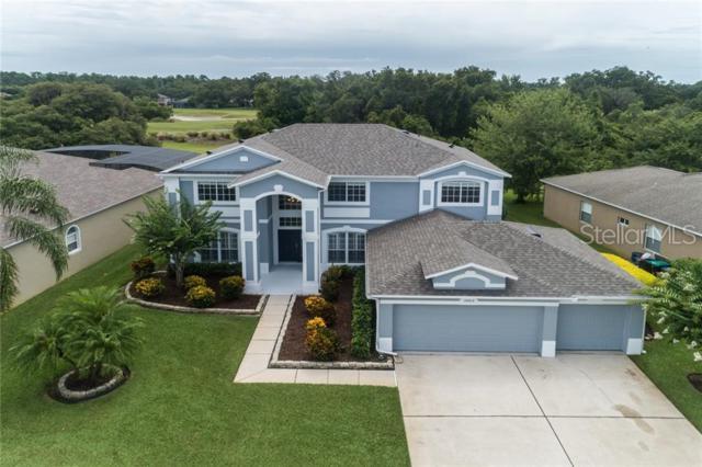 10013 Marsh Pointe Drive, Orlando, FL 32832 (MLS #O5791443) :: Paolini Properties Group