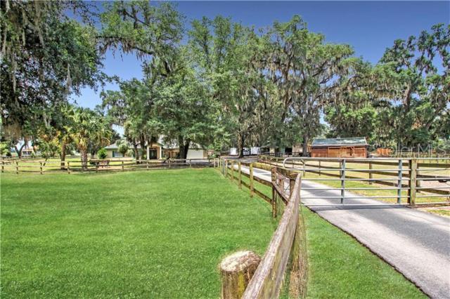 1891 NW 150TH Avenue, Ocala, FL 34482 (MLS #O5791522) :: Premium Properties Real Estate Services