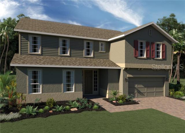4944 Blanche Court, Saint Cloud, FL 34772 (MLS #O5791626) :: Cartwright Realty