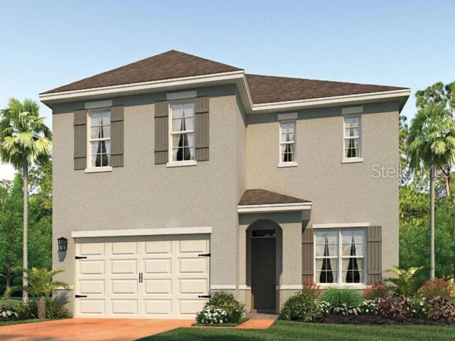 3125 Royal Tern Drive, Winter Haven, FL 33881 (MLS #O5791628) :: The Duncan Duo Team