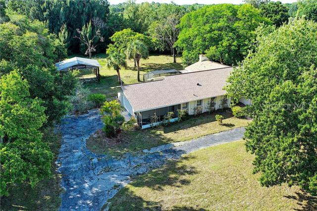 1251 Mustang Street, Nokomis, FL 34275 (MLS #O5791630) :: Griffin Group