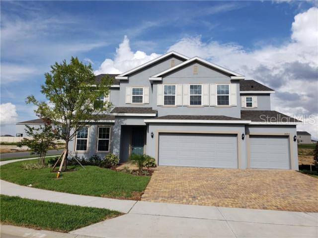 1893 Bonser Road, Minneola, FL 34715 (MLS #O5791657) :: The Duncan Duo Team