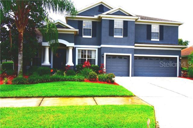 2513 Tahoe Drive, Lakeland, FL 33805 (MLS #O5791785) :: Griffin Group