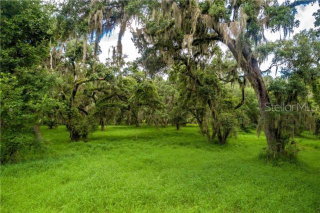 Oak Shadow Lane, Mount Dora, FL 32757 (MLS #O5791815) :: CENTURY 21 OneBlue