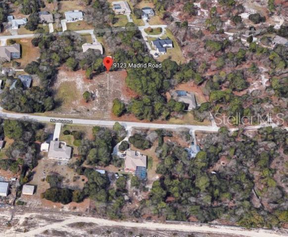 9123 Madrid Road, Weeki Wachee, FL 34613 (MLS #O5791904) :: Premium Properties Real Estate Services