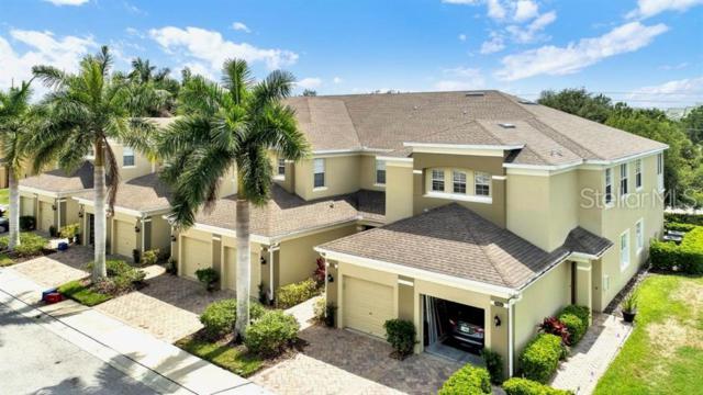 8656 Karpeal Drive #206, Sarasota, FL 34238 (MLS #O5791943) :: Paolini Properties Group