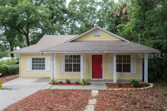 25331 Saint Anne Street, Mount Plymouth, FL 32776 (MLS #O5791973) :: Cartwright Realty