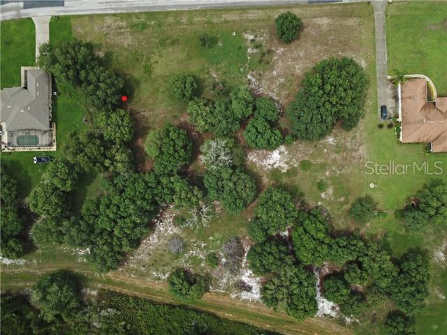 LOT 49 Greengrove Boulevard, Clermont, FL 34714 (MLS #O5792067) :: The Duncan Duo Team