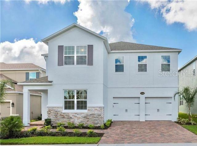 15246 Southern Martin Street, Winter Garden, FL 34787 (MLS #O5792384) :: Griffin Group