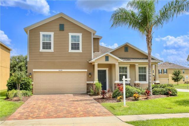 16028 Yelloweyed Drive, Clermont, FL 34714 (MLS #O5792676) :: CENTURY 21 OneBlue